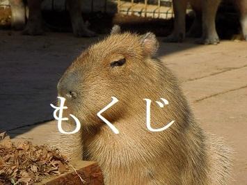 mokujiNo2.JPG